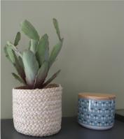 decoration cuisine plante et pot vintage