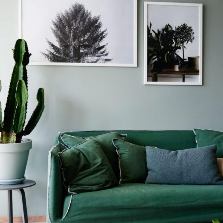 canapé vert foncé mur vert de gris
